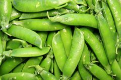 Green pea pods. Heap of green peas Royalty Free Stock Images