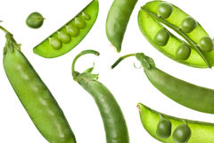 Green pea pods isolated on white stock photography