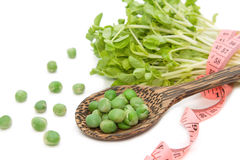 Green pea with snow pea sprouts and measuring tape Royalty Free Stock Photography