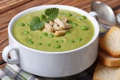 Green pea soup with croutons and mint horizontal Royalty Free Stock Photo