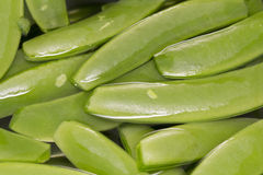 Green pea on water background. stock photos