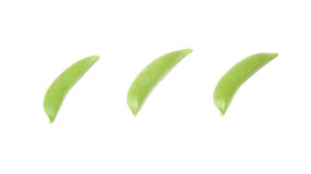 Green pea in a white background Royalty Free Stock Photo
