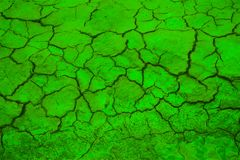 Green peace. Green desert Royalty Free Stock Photography