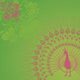 Green peacock background Royalty Free Stock Photos