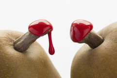 Green pears with red sealing wax Stock Photography