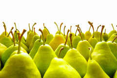 Green pears. Green  Ripe Pears. Fruits Background Royalty Free Stock Images