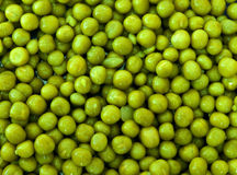 Green peas. Canned green peas as a background Stock Image