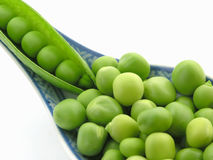 Green peas Stock Photography