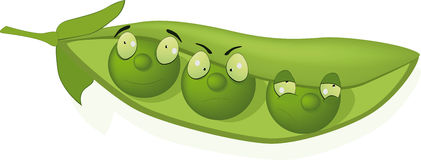 Green peas. Toy green pod of peas Royalty Free Stock Images