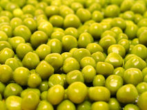 Green peas. Background Stock Images