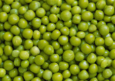Green peas. Close-up may be used as background or texture Royalty Free Stock Images