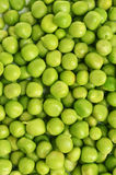 Green Peas background close up Stock Image
