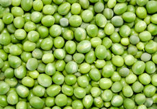 Green peas background. Directly above shot Stock Image