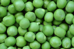 Green peas background Royalty Free Stock Images