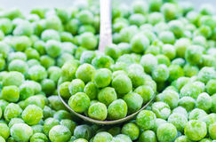 Green peas background. Stock Photography