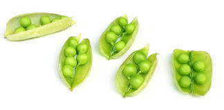 Green peas on beans Stock Photography