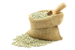 Green peas in a burlap bag with a wooden scoop Stock Image