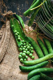 Green peas close up Royalty Free Stock Photography