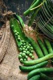 Green peas close up. Viewon sack Royalty Free Stock Photography