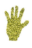 Green peas. Closeup white background Royalty Free Stock Photo