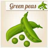 Green peas. Detailed Vector Icon Royalty Free Stock Photography