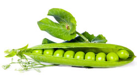 Green peas, food concept Stock Image