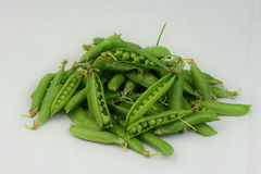 Green Peas Fresh from the Garden Royalty Free Stock Photo