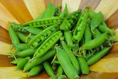 Green Peas Fresh from the Garden in Wooden Bowl Stock Photography