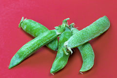 Green peas. Fresh peas on red background Stock Photography