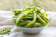 Green peas. Hulk pods in a glass bowl Stock Photos