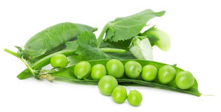 Green peas isolated on the white background Stock Image