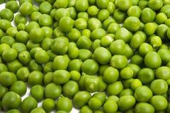 green peas isolated stock photos