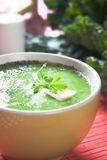 Green peas and kale soup Royalty Free Stock Photo
