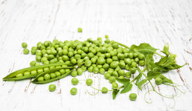 Green peas with leaf and flower Stock Image
