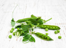 Green peas with leaf and flower Stock Photography