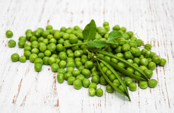 Green peas with leaf Stock Image