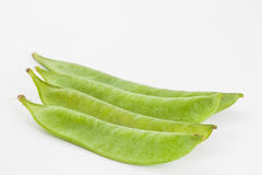 Green peas Pisum sativum Royalty Free Stock Photo