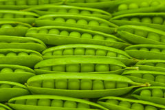 Green peas in pod Stock Photo