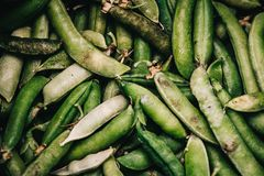 A closeup shot of a bunch of snap peas. royalty free stock images