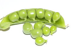 Green peas in pod. Fresh green vegetable peas in pod royalty free stock photo