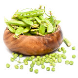Green peas pods Stock Image