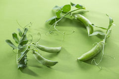 Green peas pods Stock Photos