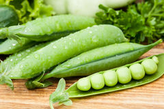 Green peas pods lying with greenery Stock Images