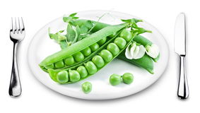 Green peas with pods on a plate. Royalty Free Stock Photography