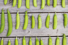 Green peas rows on wooden table Stock Images