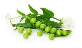 Green peas in shell isolated on the white background Royalty Free Stock Photography