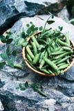 Green peas on stone Stock Photo