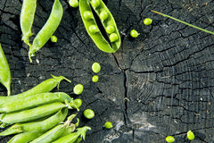 Green peas on a stump on a wooden background Stock Photos