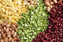 Green peas in various bean seed Royalty Free Stock Photography