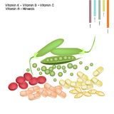 Green Peas with Vitamin K, B, C and Vitamin A Stock Photos